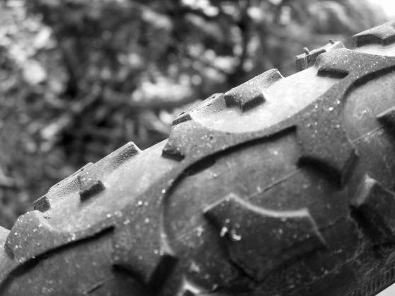 Tire, Farmington Hills, 2011