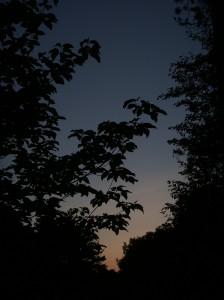 sunrise or sunset?