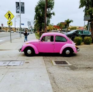 Mid City_pink bug