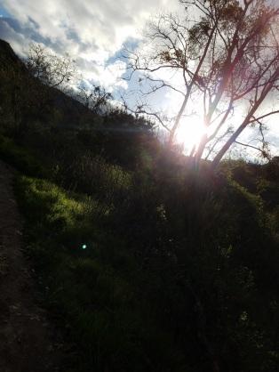 Topanga_hike